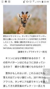ノーマルニュース記事